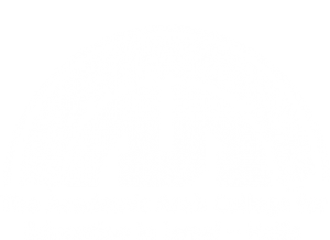 Arabic College, Haifa